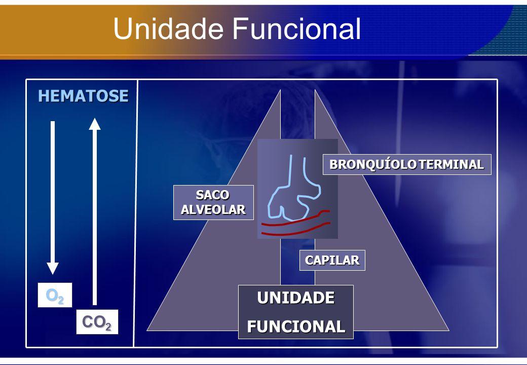 Unidade Funcional HEMATOSE O2 UNIDADE FUNCIONAL CO2