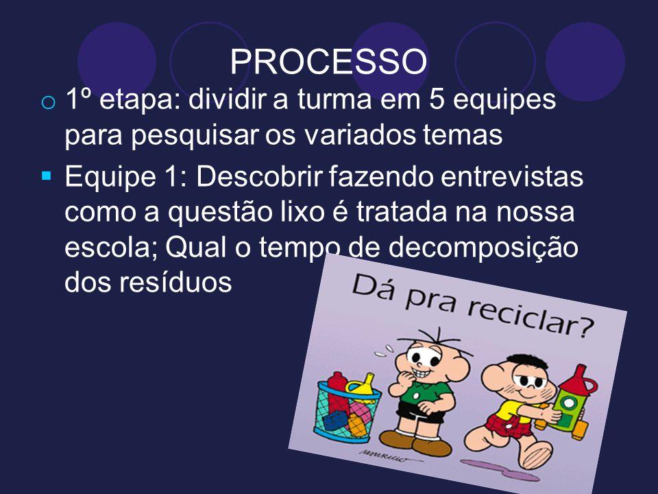 PROCESSO 1º etapa: dividir a turma em 5 equipes para pesquisar os variados temas.
