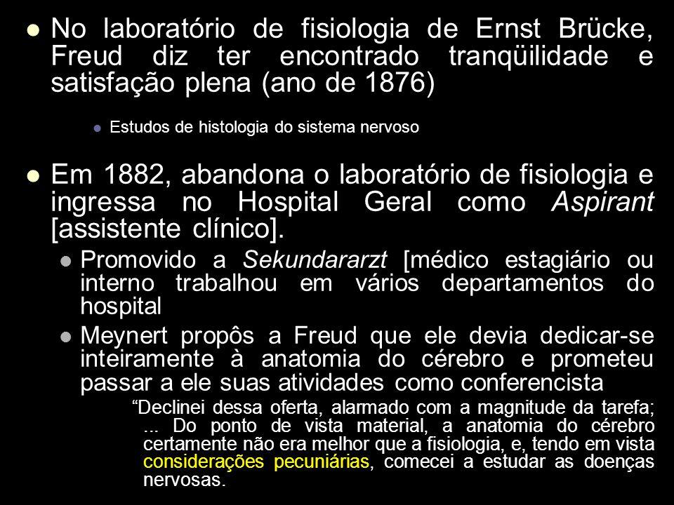 No laboratório de fisiologia de Ernst Brücke, Freud diz ter encontrado tranqüilidade e satisfação plena (ano de 1876)