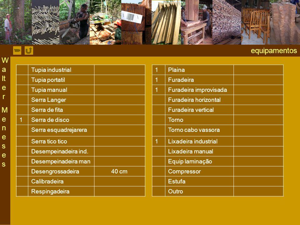 equipamentos Walter Meneses Tupia industrial 1 Plaina Tupia portatil