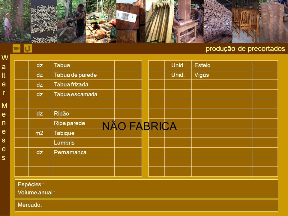NÃO FABRICA produção de precortados Walter Meneses dz Tabua Unid.