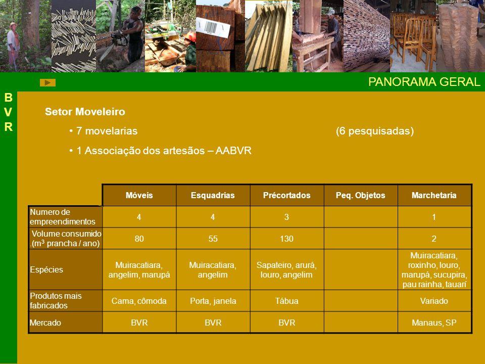 PANORAMA GERAL BVR Setor Moveleiro 7 movelarias (6 pesquisadas)
