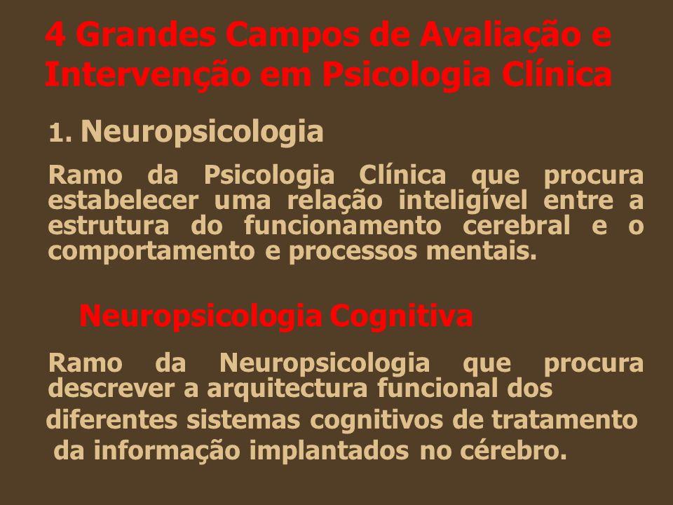4 Grandes Campos de Avaliação e Intervenção em Psicologia Clínica