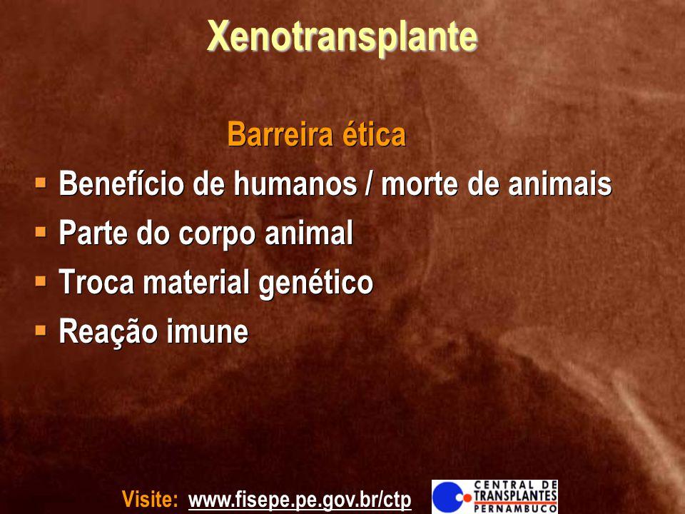 Xenotransplante Benefício de humanos / morte de animais