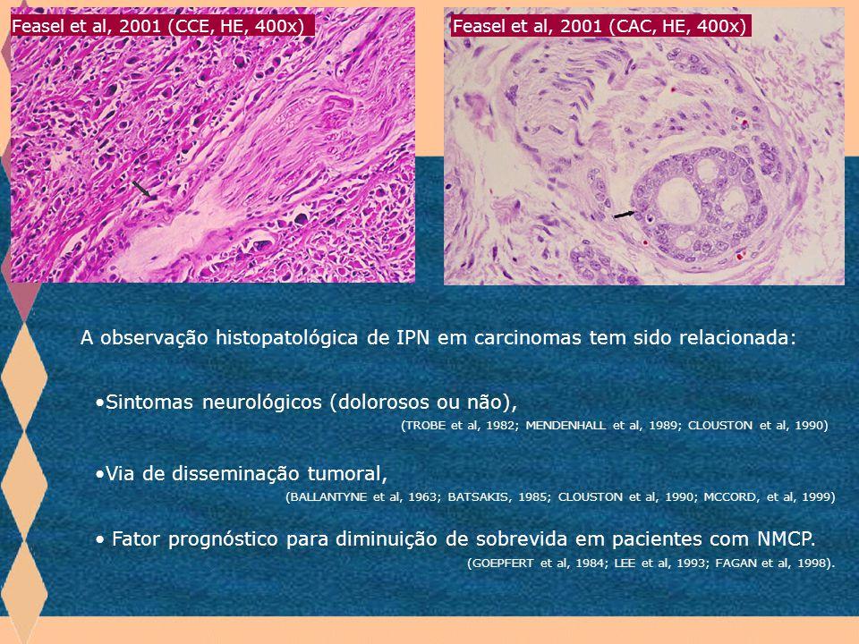 Feasel et al, 2001 (CCE, HE, 400x) Feasel et al, 2001 (CAC, HE, 400x) Introdução.
