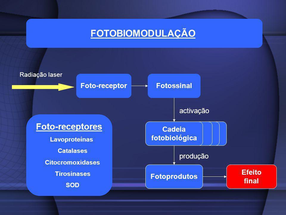 FOTOBIOMODULAÇÃO Foto-receptores Foto-receptor Fotossinal activação