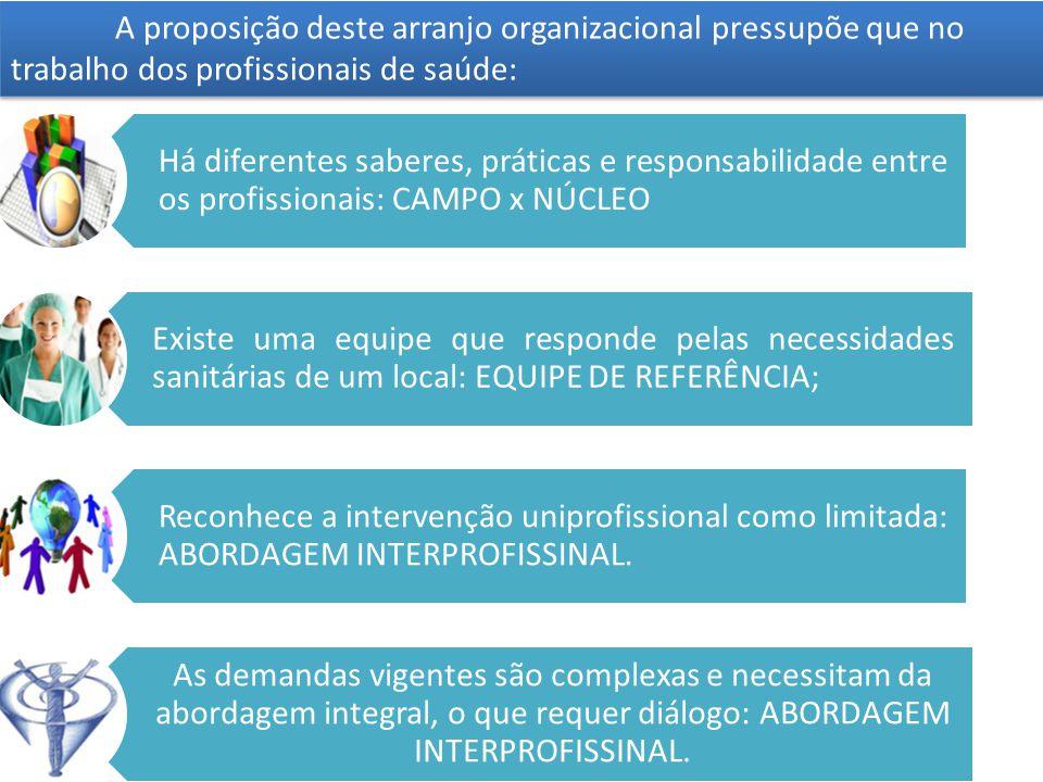 A proposição deste arranjo organizacional pressupõe que no trabalho dos profissionais de saúde: