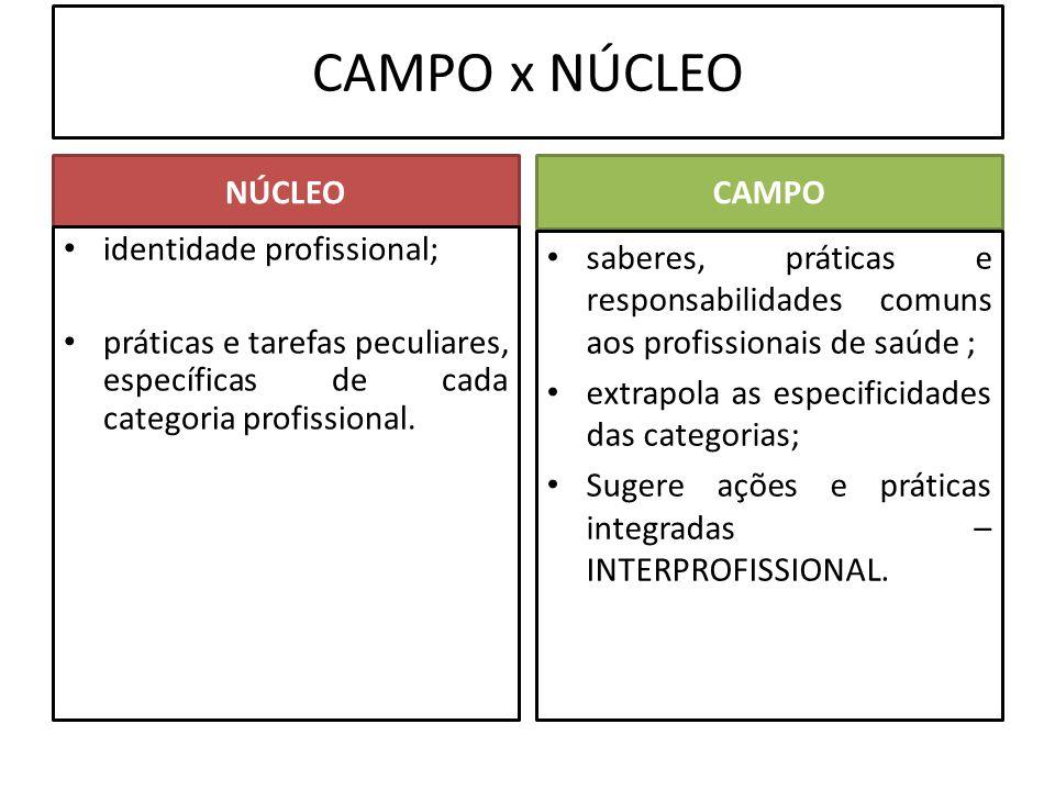 CAMPO x NÚCLEO NÚCLEO CAMPO identidade profissional;