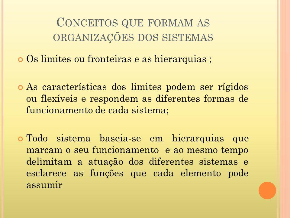Conceitos que formam as organizações dos sistemas