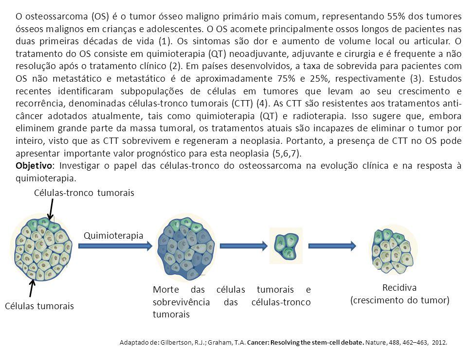 (crescimento do tumor)