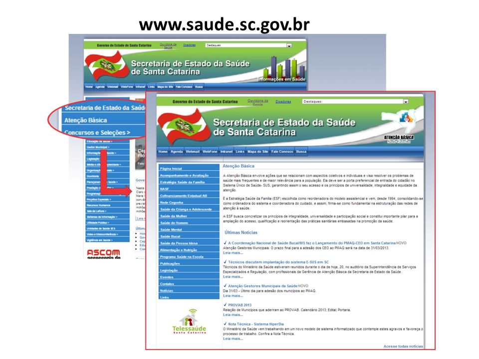 www.saude.sc.gov.br