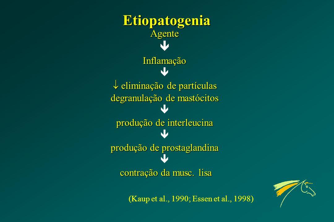 Etiopatogenia  Agente Inflamação  eliminação de partículas