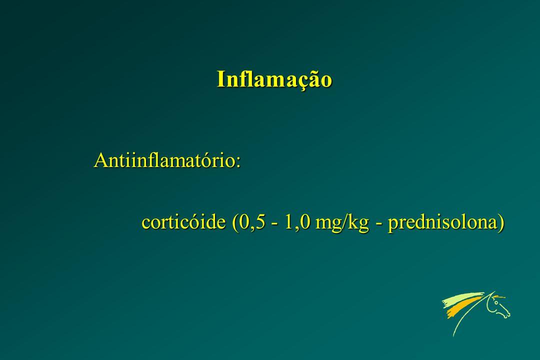 Inflamação Antiinflamatório: