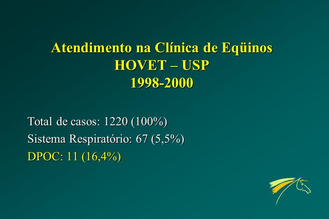 Atendimento na Clínica de Eqüinos HOVET – USP 1998-2000