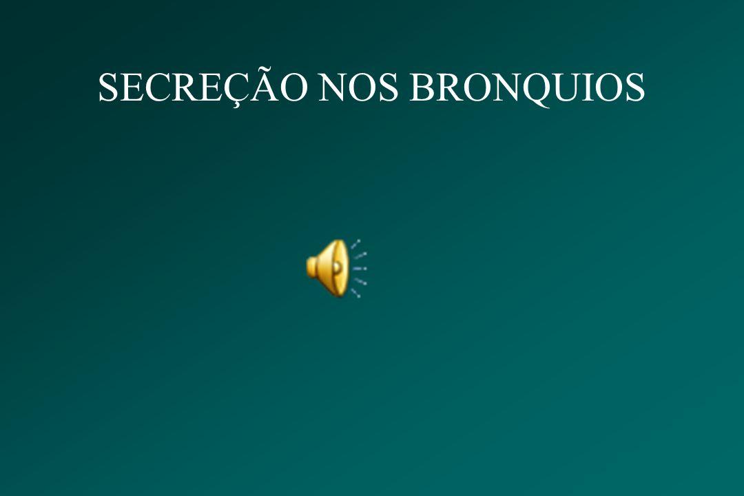 SECREÇÃO NOS BRONQUIOS