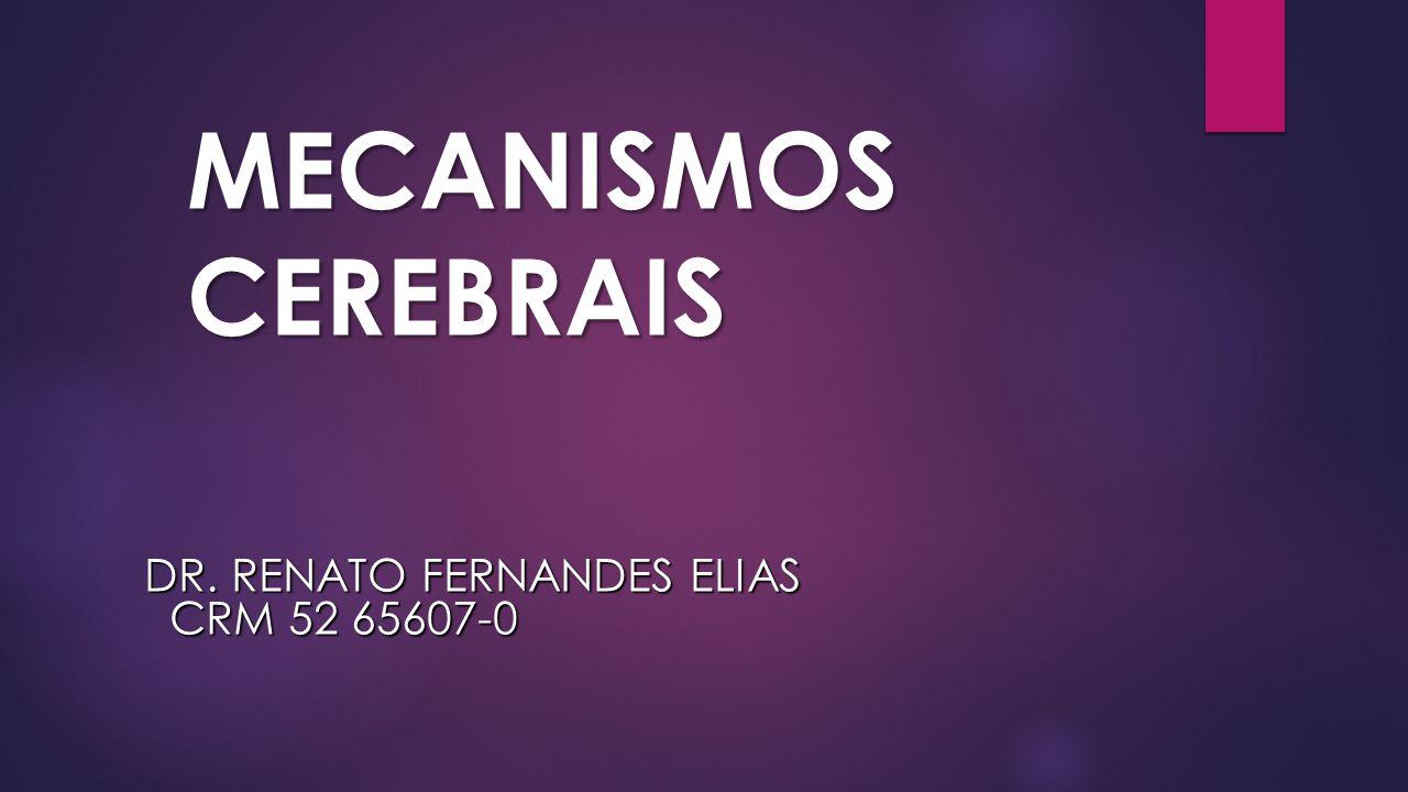 Dr. Renato Fernandes Elias CRM 52 65607-0