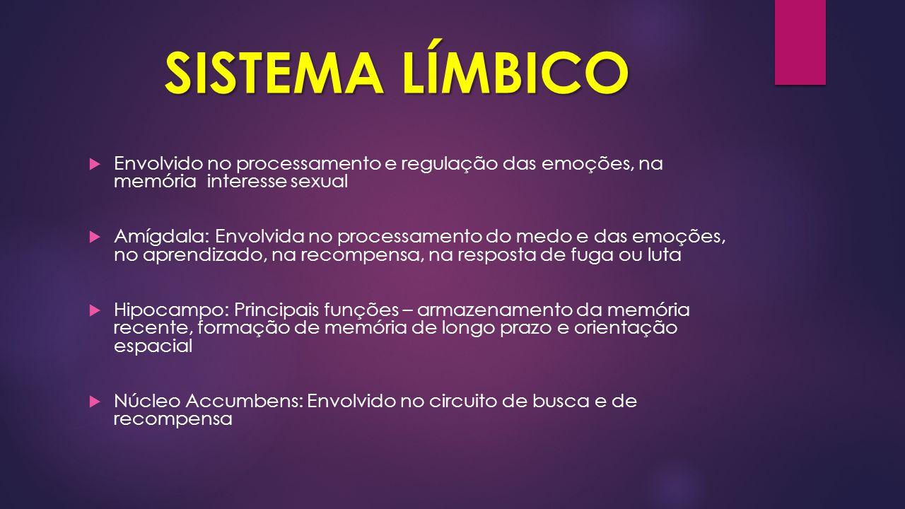 SISTEMA LÍMBICO Envolvido no processamento e regulação das emoções, na memória interesse sexual.