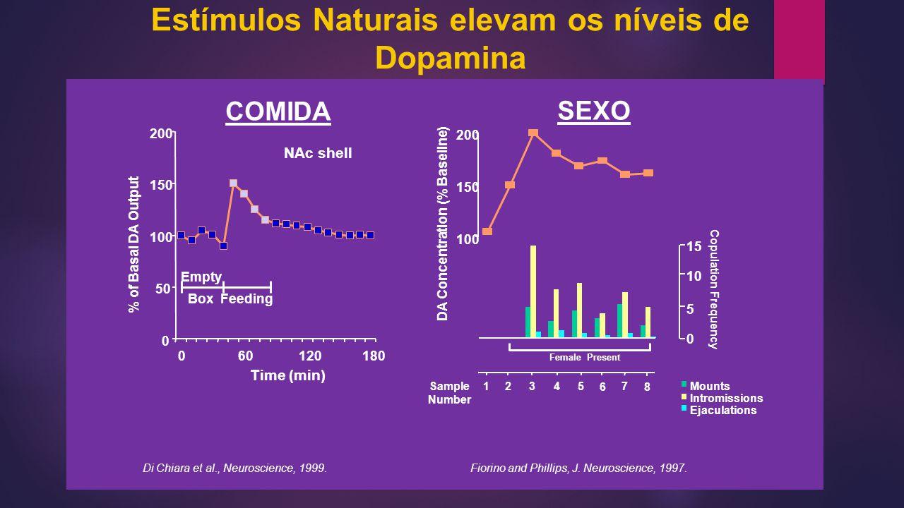 Estímulos Naturais elevam os níveis de Dopamina