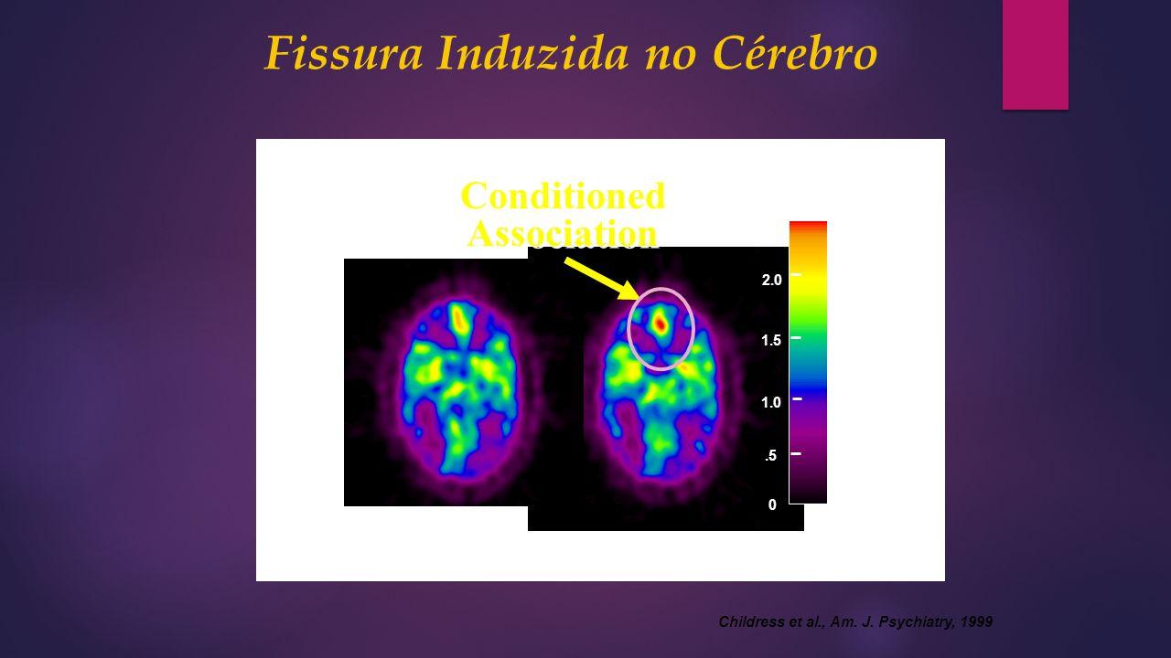 Fissura Induzida no Cérebro