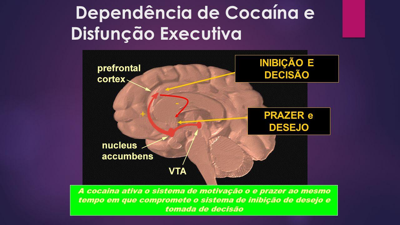 Dependência de Cocaína e Disfunção Executiva