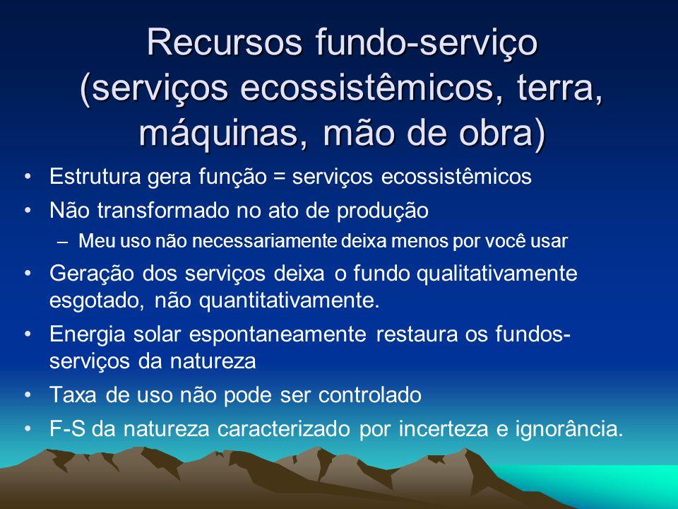 Recursos fundo-serviço (serviços ecossistêmicos, terra, máquinas, mão de obra)