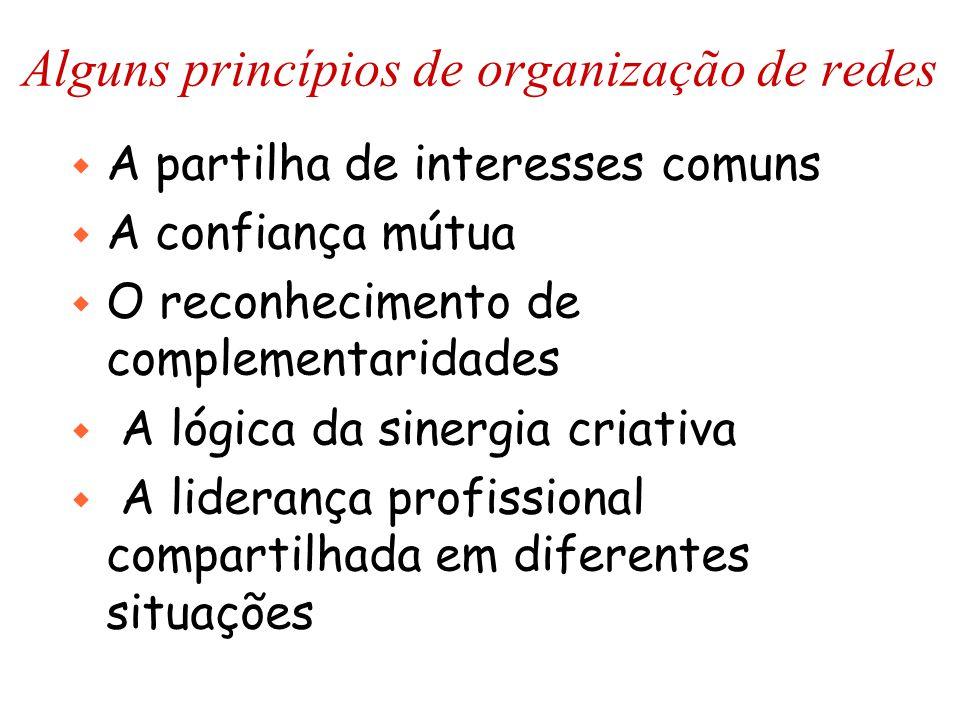 Alguns princípios de organização de redes