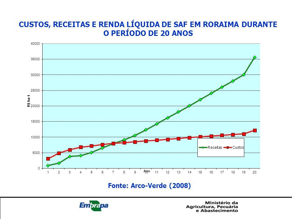 custos, receitas e renda líquida dE SAF em roraima durante o período de 20 anos
