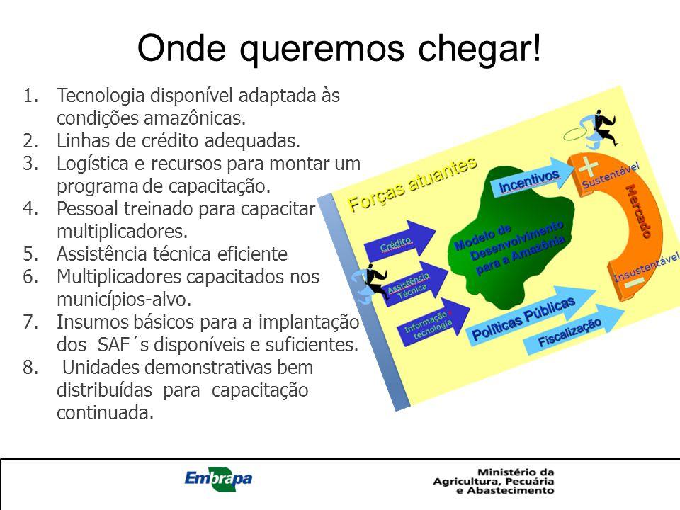 Onde queremos chegar! Tecnologia disponível adaptada às condições amazônicas. Linhas de crédito adequadas.
