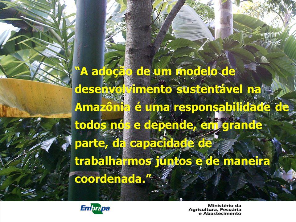 A adoção de um modelo de desenvolvimento sustentável na Amazônia é uma responsabilidade de todos nós e depende, em grande parte, da capacidade de trabalharmos juntos e de maneira coordenada.