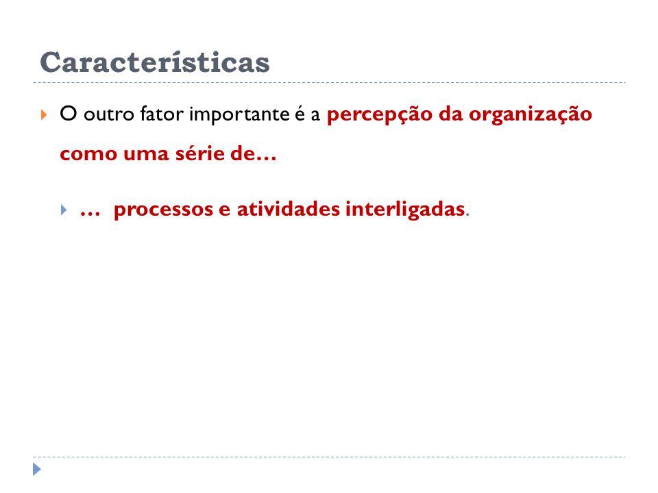 Características O outro fator importante é a percepção da organização como uma série de… … processos e atividades interligadas.