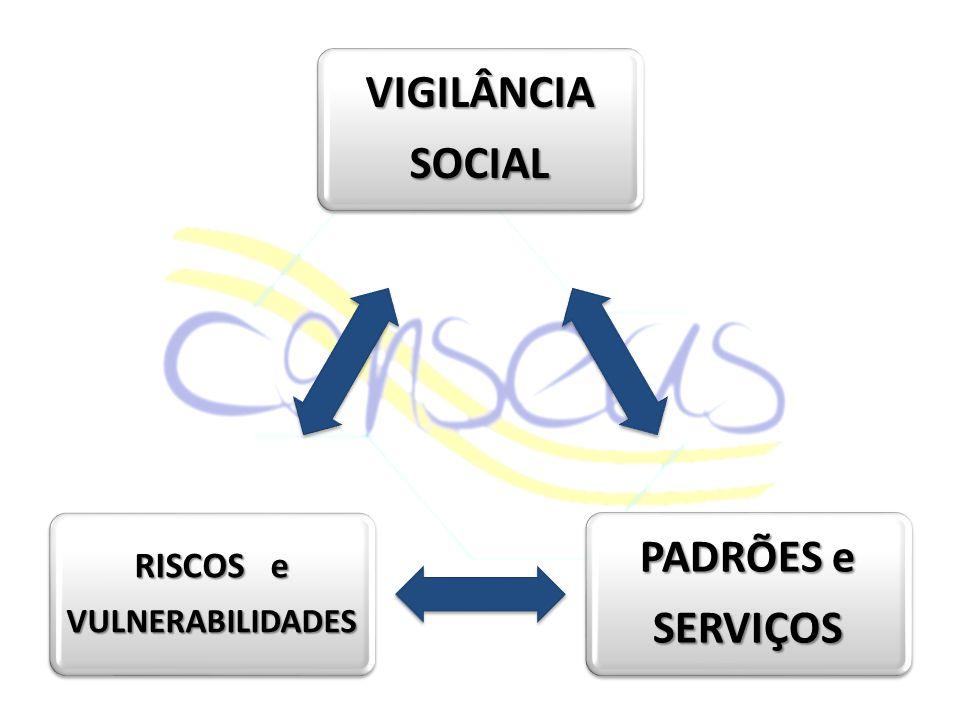 VIGILÂNCIA SOCIAL SERVIÇOS PADRÕES e RISCOS e VULNERABILIDADES