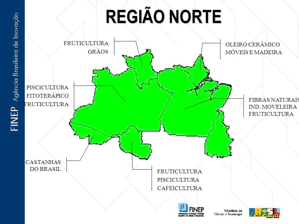 REGIÃO NORTE OLEIRO CERÂMICO GRÃOS MÓVEIS E MADEIRA FITOTERÁPICO