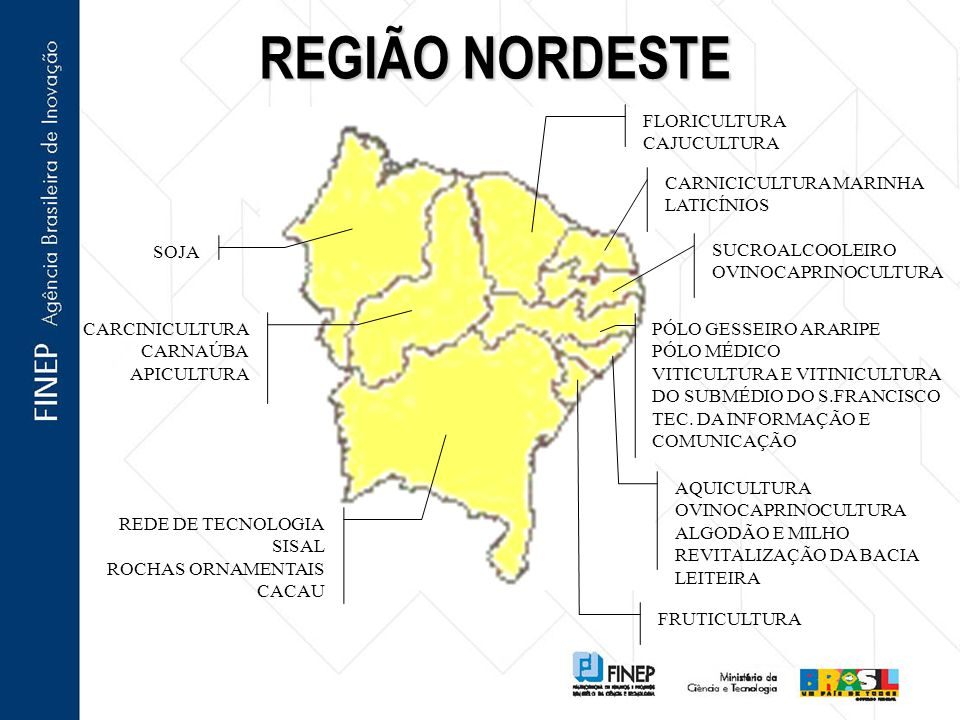 REGIÃO NORDESTE FLORICULTURA CAJUCULTURA CARNICICULTURA MARINHA