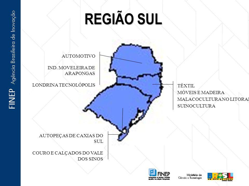 REGIÃO SUL AUTOMOTIVO IND. MOVELEIRA DE ARAPONGAS