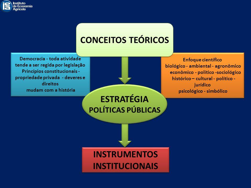 CONCEITOS TEÓRICOS ESTRATÉGIA INSTRUMENTOS INSTITUCIONAIS