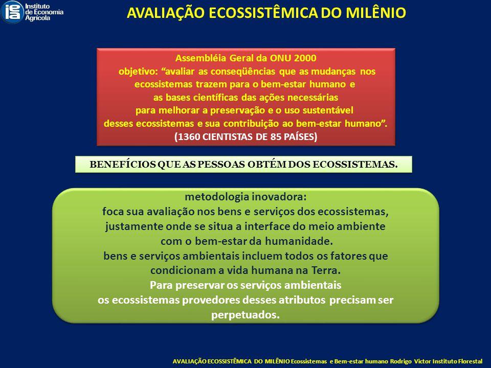 AVALIAÇÃO ECOSSISTÊMICA DO MILÊNIO