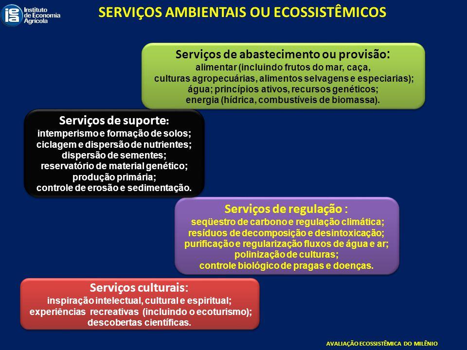 SERVIÇOS AMBIENTAIS OU ECOSSISTÊMICOS
