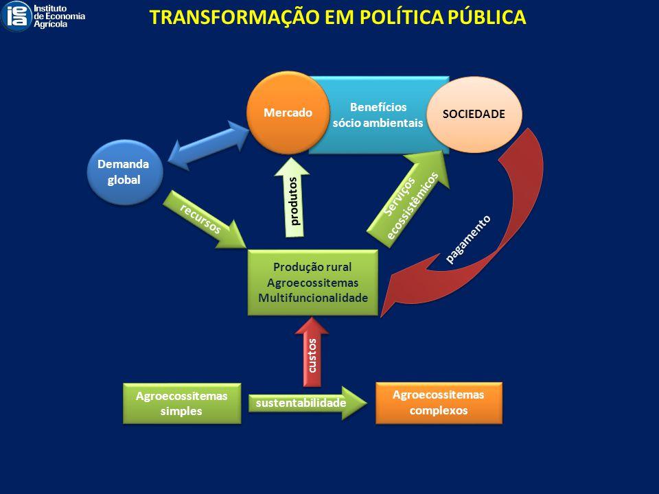 TRANSFORMAÇÃO EM POLÍTICA PÚBLICA