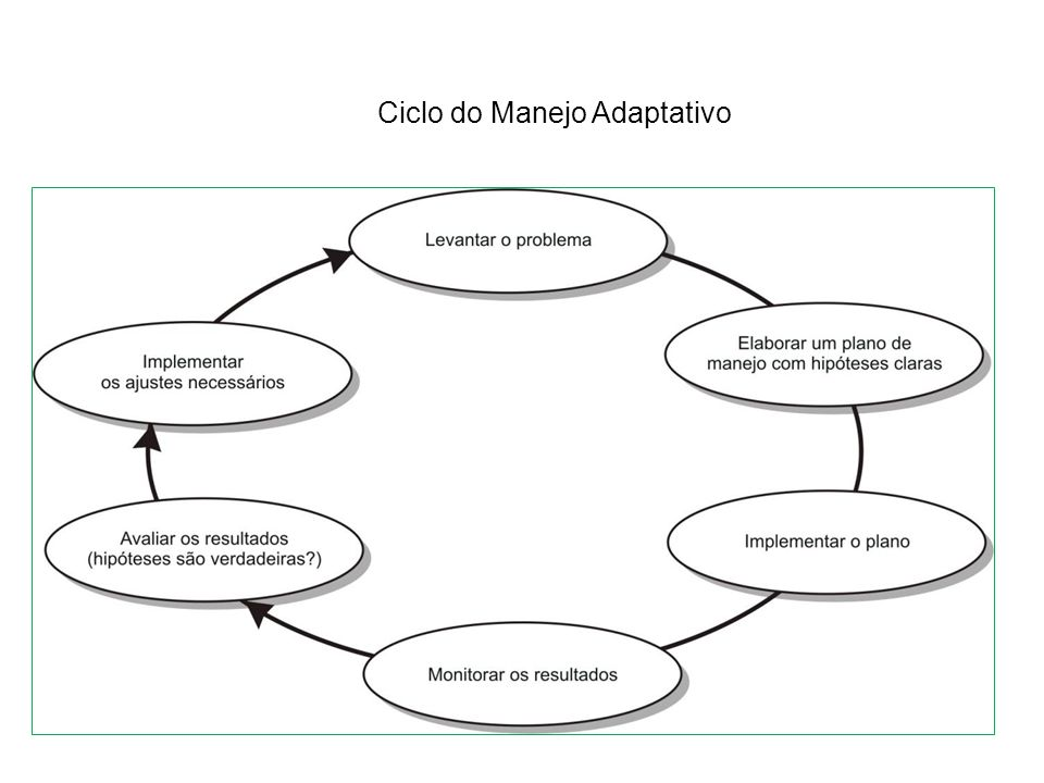 Ciclo do Manejo Adaptativo