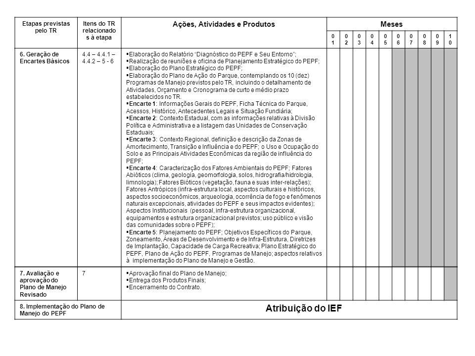 Atribuição do IEF Ações, Atividades e Produtos Meses