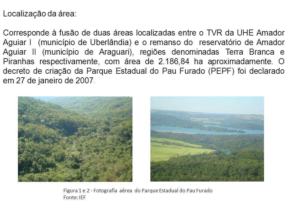 Localização da área: