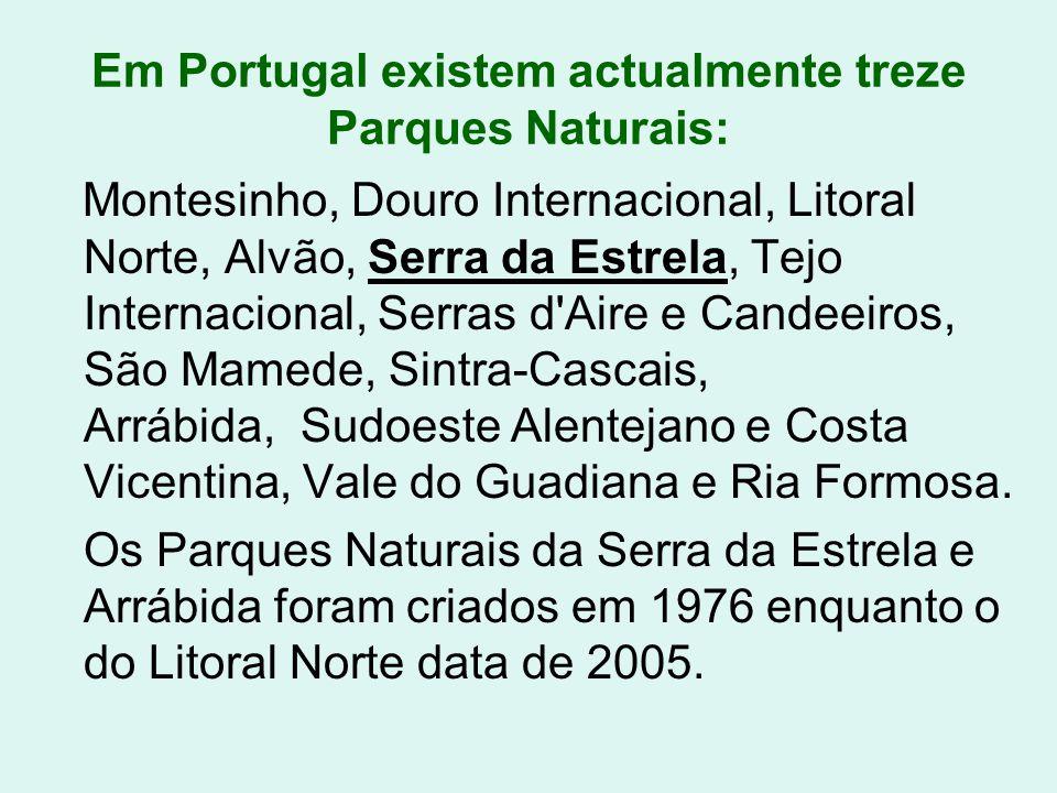 Em Portugal existem actualmente treze Parques Naturais: