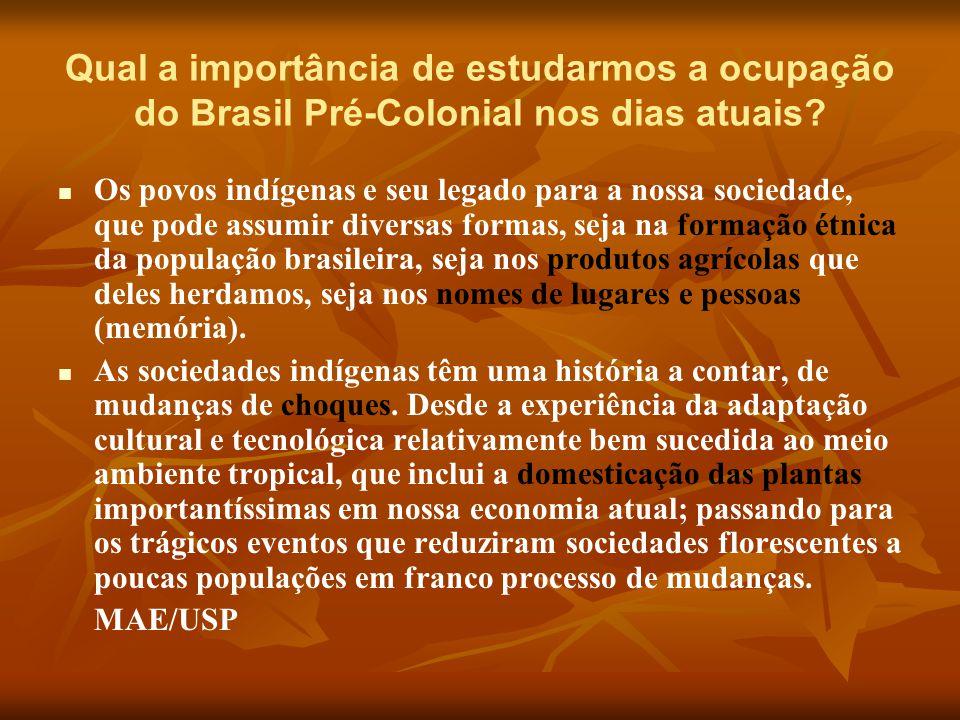 Qual a importância de estudarmos a ocupação do Brasil Pré-Colonial nos dias atuais