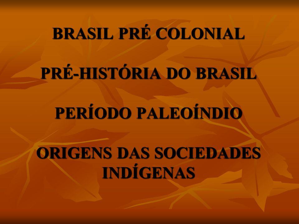 BRASIL PRÉ COLONIAL PRÉ-HISTÓRIA DO BRASIL PERÍODO PALEOÍNDIO ORIGENS DAS SOCIEDADES INDÍGENAS