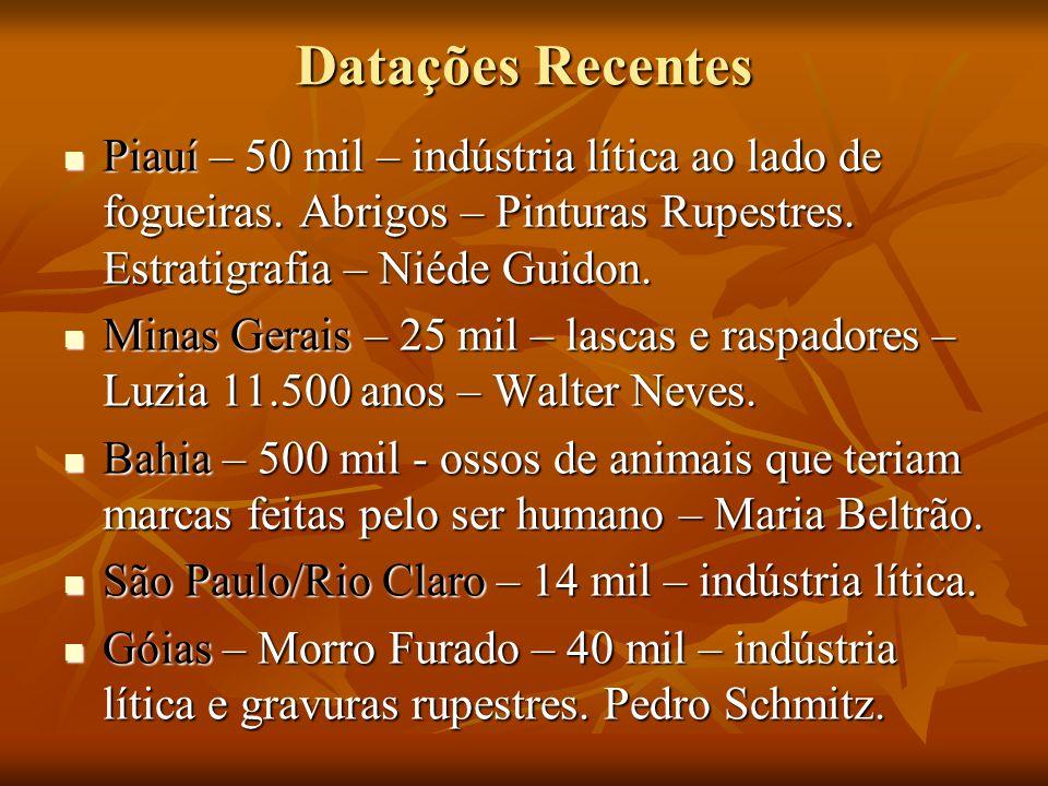 Datações Recentes Piauí – 50 mil – indústria lítica ao lado de fogueiras. Abrigos – Pinturas Rupestres. Estratigrafia – Niéde Guidon.