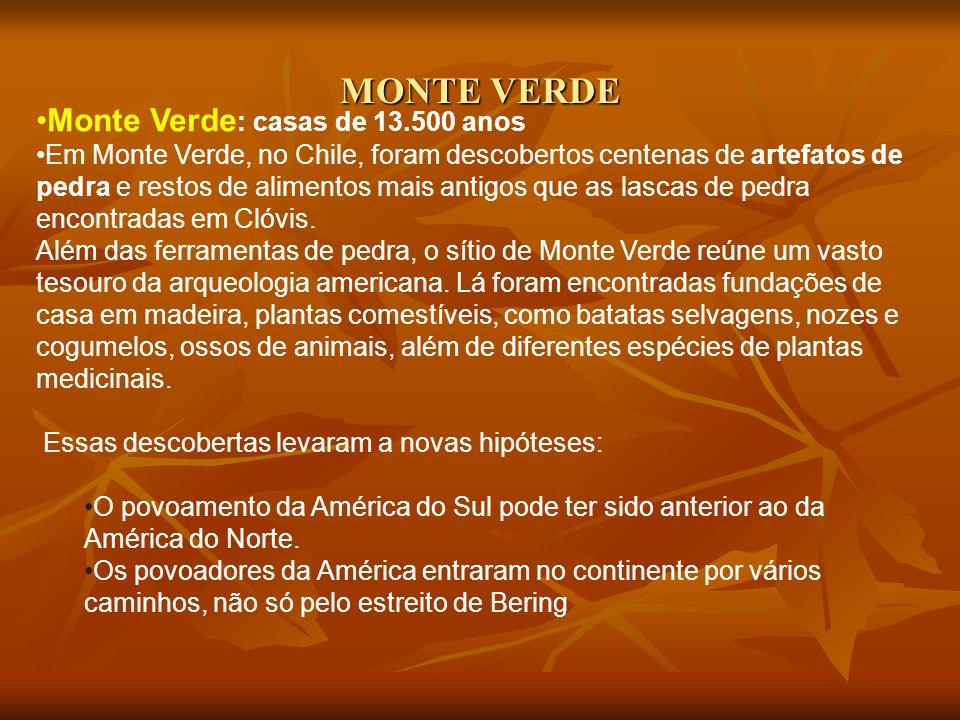 MONTE VERDE Monte Verde: casas de 13.500 anos