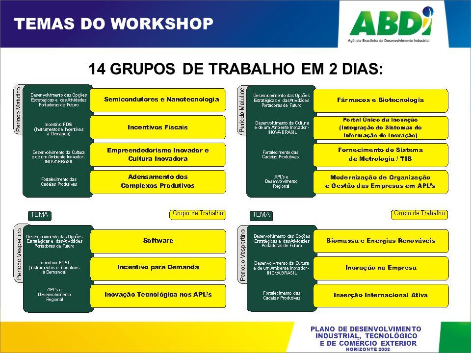 TEMAS DO WORKSHOP 14 GRUPOS DE TRABALHO EM 2 DIAS:
