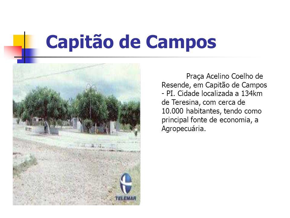 Capitão de Campos