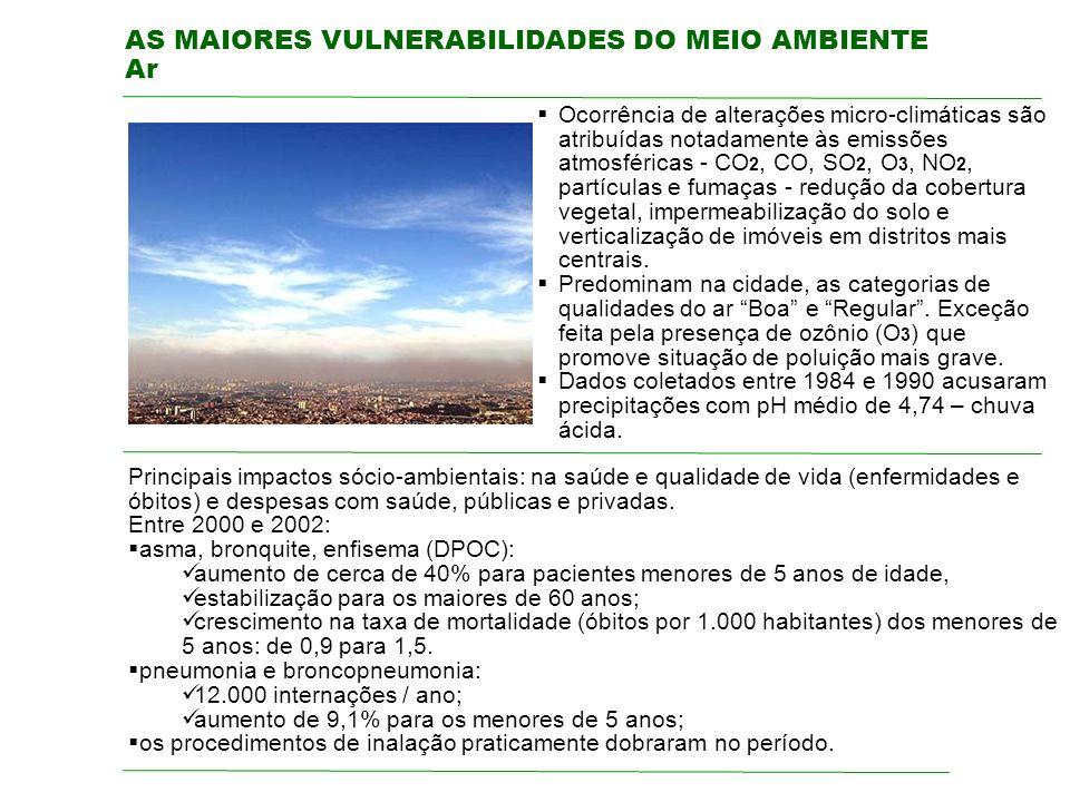 AS MAIORES VULNERABILIDADES DO MEIO AMBIENTE Ar
