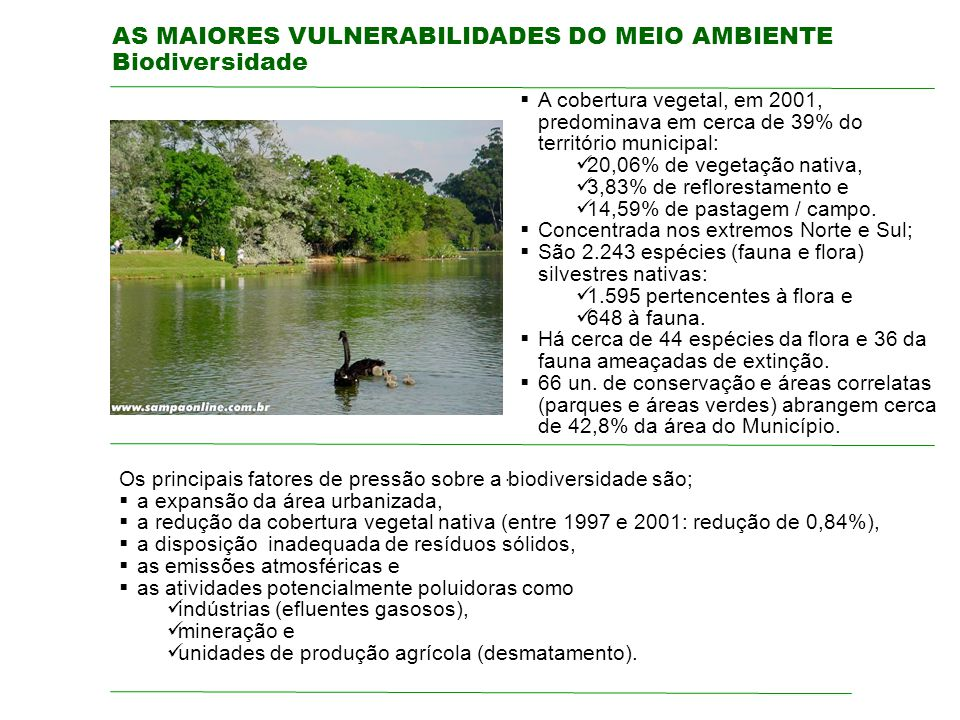 AS MAIORES VULNERABILIDADES DO MEIO AMBIENTE Biodiversidade